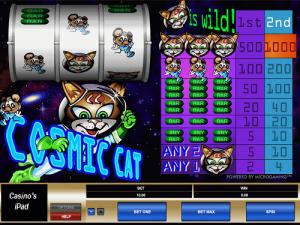 Cosmic-Cat