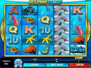 Dolphin Coas